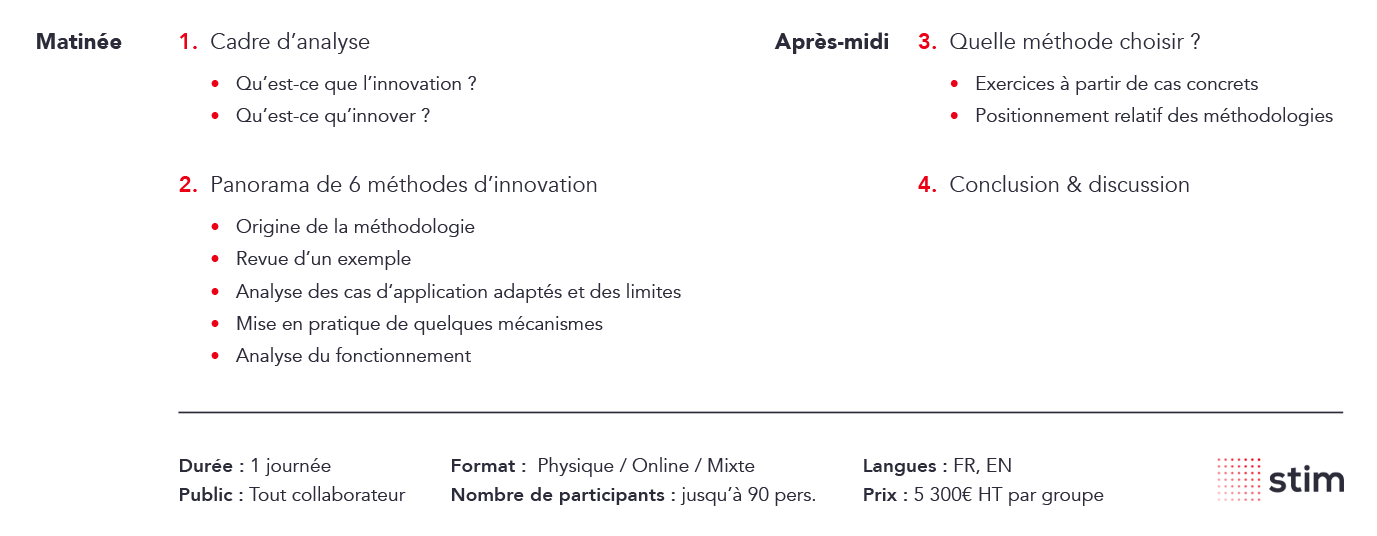 stim-formation-programme-méthodes-innovation-laquelle-choisir